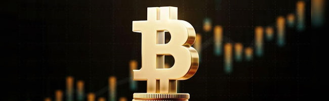 Top 100 Bitcoin addresses accumulated $11B more BTC in the past 30 days